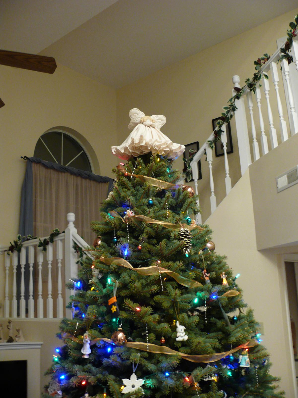 Angel On Tree Closeup